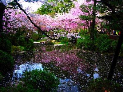 Japanese_Zen-garden_4
