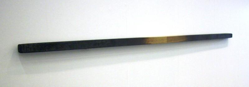 DSCI0153