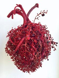 Özcan Uzkur, İnsanlığın Sonu Serisi 1 The End of Humanity Series 1, 30x20x20 cm, Kişisel teknik, Kurutulmuş bitki, iplik, vernik, kauçuk, 2016
