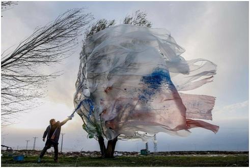 Hatice Doğan: Mehmet Kavukcu'nun Performansları'nda Doğa-İnsan İlişkisi ve Şiddet